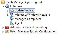 HTTP Status 401 error when testing the WSUS connection to Patch Manager